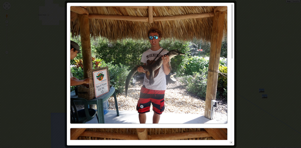TIA-Everglades